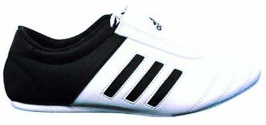 a kickboxing shoe